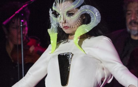 Pictured: Björk performing live in Mexico in March 2017.