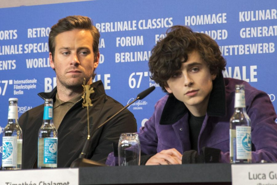 Pictured: Stars Armie Hammer and Timothée Chalamet.