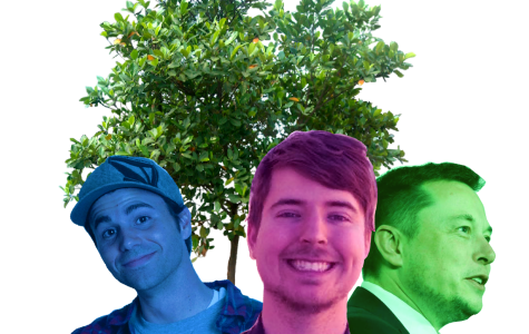 MrBeast's Tree Planting Campaign Inspires Fans