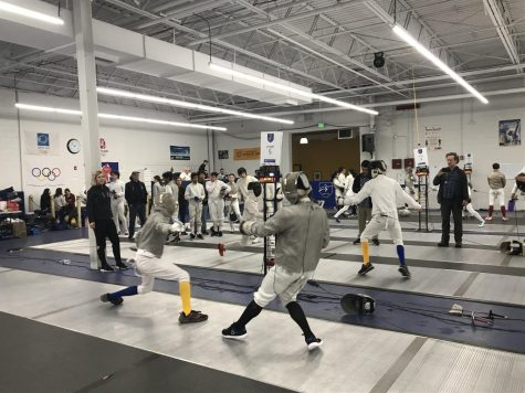 Fencing: The Art of the Blade