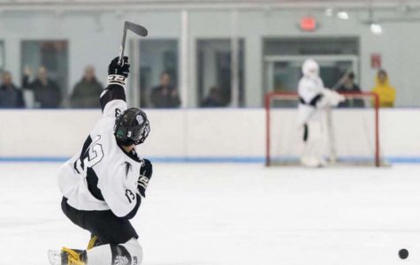 The boys hockey team made it to the Division 3 North sectional finals, something the program has never done before.