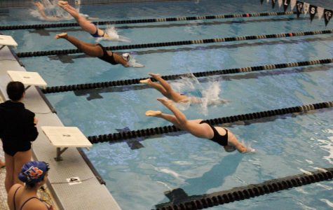 CRLS Swim and Dive Team's Season Goes Swimmingly